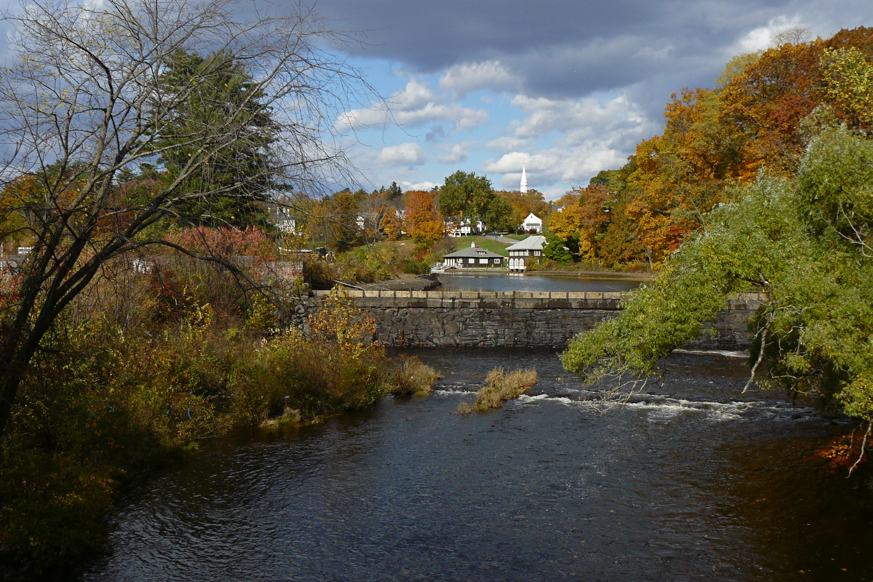 Draining Paradise Pond | Mill River Greenway Initiative